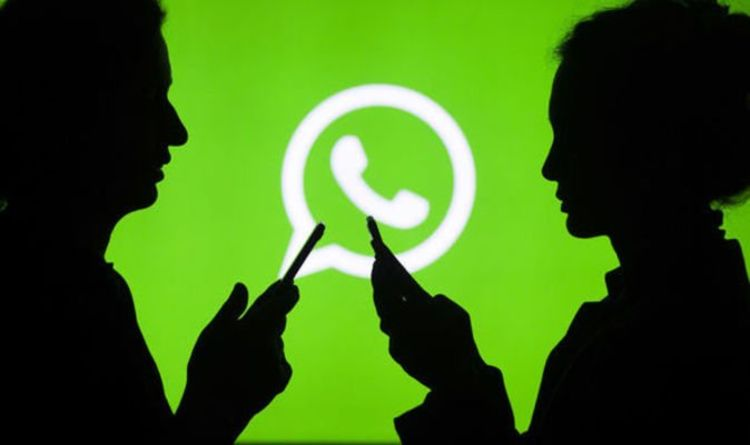 Whatsapp Helpline For Virus Inquiries Launched By Government